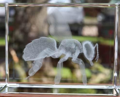 Laser-Bee