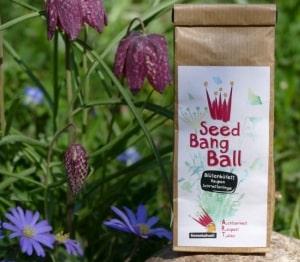 Seed Bang Ball für Schmetterlinge und ihre Raupene Raupen