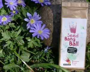 Seed Bang Ball für Wildbienen und Schmetterlinge